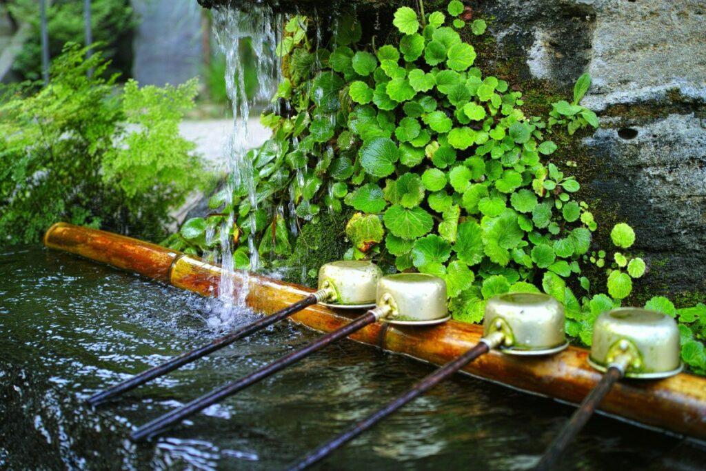 意外と知らない神社仏閣の参拝方位の豆知識